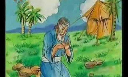 Kisah Nabi Ayyub Alaihissalam