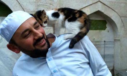 Kisah Seorang Yang Mendapat Ampunan Allah Karena Telah Menolong Kucing