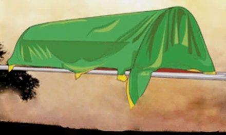 Kisah Abu Nawas dan Ahli Fiqih
