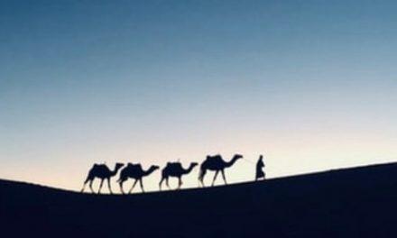Meneladani Sifat Pemaaf Nabi Yusuf, Berakhir Persatuan Keluarga